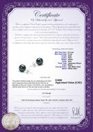 product certificate: B-AAA-859-E-Akoy