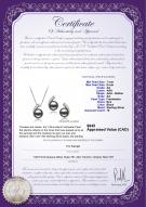 product certificate: FW-B-AA-78-S-Claudia