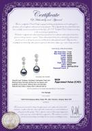 product certificate: FW-B-AAAA-78-E-Colleen