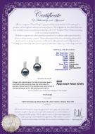 product certificate: FW-B-AAAA-78-E-Valery
