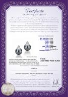 product certificate: FW-B-AAAA-89-E-Evelyn