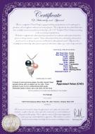product certificate: FW-BPW-AAAA-67-P-Grape