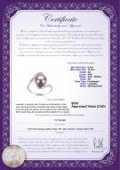 product certificate: FW-L-AA-910-R-Chantel