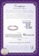 product certificate: FW-L-AAA-8595-B
