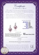 product certificate: FW-L-AAAA-78-E-Valery