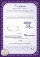 product certificate: FW-P-A-67-N-Atina