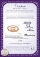 product certificate: FW-P-A-67-S-DBL