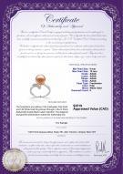 product certificate: FW-P-AAAA-910-R-Grace