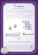 product certificate: FW-W-AAA-56-E-Dolphin