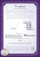 product certificate: FW-W-AAAA-56-N-Smile