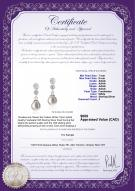 product certificate: FW-W-AAAA-78-E-Colleen