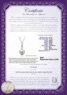 product certificate: FW-W-AAAA-910-P-Thelma