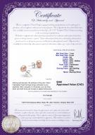 product certificate: P-AA-78-E