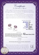 product certificate: P-AA-910-E-SS-OLAV