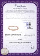 product certificate: P-AAA-67-B