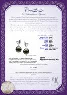 product certificate: TAH-B-AAA-910-E-Jeannie
