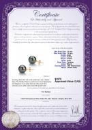 product certificate: TE1PC11A-Y