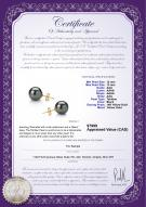 product certificate: TE1PC12A-Y
