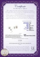 product certificate: W-AA-67-E