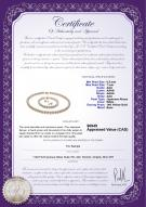 product certificate: W-AAA-657-S-Akoy