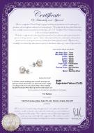 product certificate: W-AAAA-78-E-925-SSP