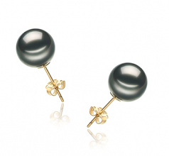 9-10mm AA Quality Tahitian Cultured Pearl Earring Pair in Black