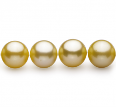 10.9-12.8mm AAA Quality South Sea Cultured Pearl Necklace in Gold