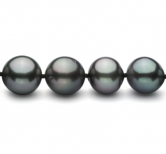 8-10mm AA+ Quality Tahitian Cultured Pearl Necklace in Black