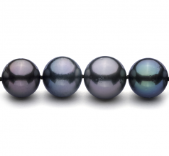11.1-14.6mm AA+ Quality Tahitian Cultured Pearl Necklace in Multicolor