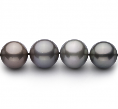 9.2-13.9mm AA+ Quality Tahitian Cultured Pearl Necklace in Multicolor