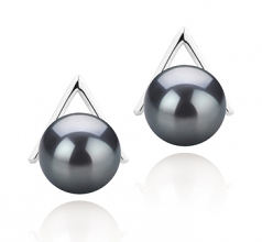 8-9mm AAAA Quality Freshwater Cultured Pearl Earring Pair in Africa Black