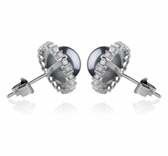 7-8mm AAAA Quality Freshwater Cultured Pearl Earring Pair in Dreama Black
