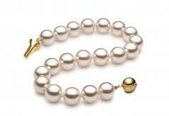 7.5-8mm Hanadama - AAAA Quality Japanese Akoya Cultured Pearl Bracelet in Hanadama 7-inch White