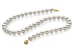 8-8.5mm Hanadama - AAAA Quality Japanese Akoya Cultured Pearl Necklace in Hanadama 23-inch White