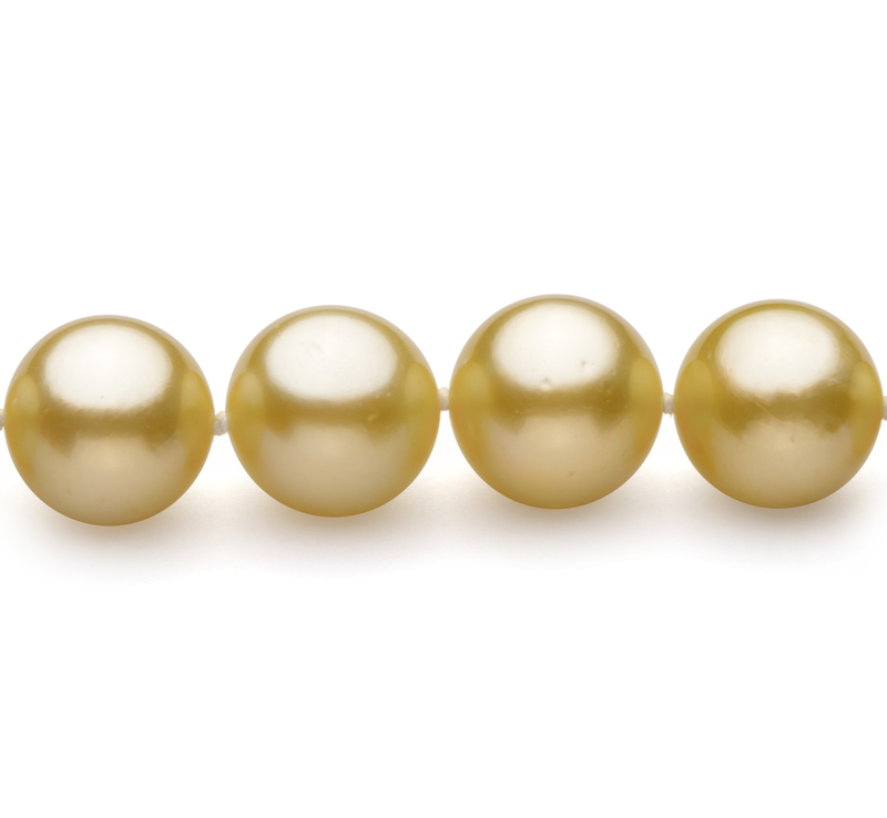 Gold 9-11.7mm AAA Quality South Sea 14K Yellow Gold Cultured Pearl Necklace