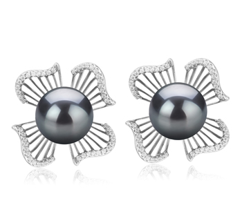 10-11mm AAA Quality Tahitian Cultured Pearl Earring Pair in Abigail Black
