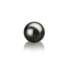 7-8mm AA Quality Japanese Akoya Loose Pearl in Black