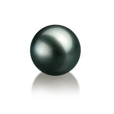 12-13mm AAA Quality Tahitian Loose Pearl in Black